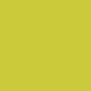 Kona EV Acid Yellow